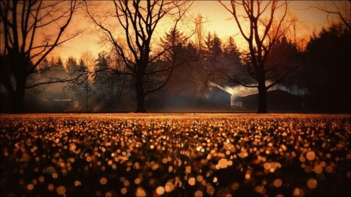 Чаровница Осень (49 осенних пейзажей)
