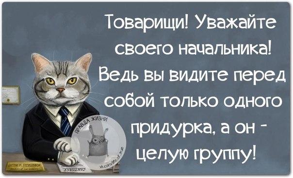 Товарищи! Уважайте своего начальника!