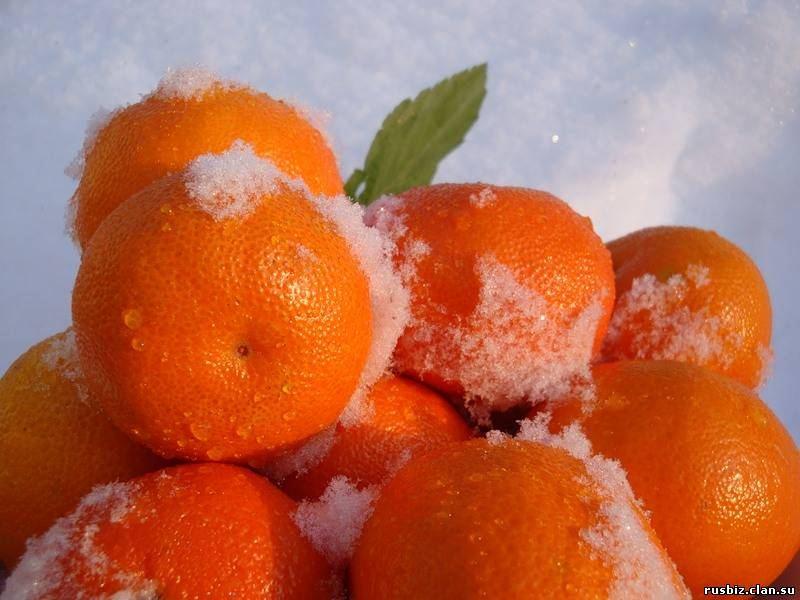 картинки мандарины на телефон