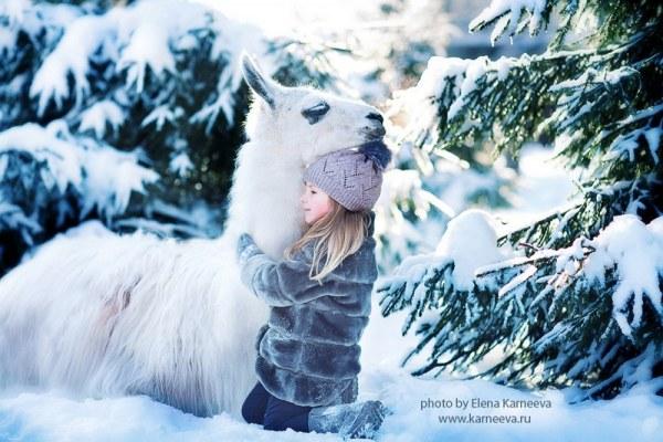 Картинки леса зимой для детей