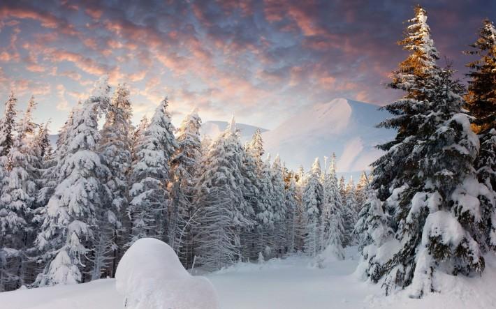 """Красивые картинки на рабочий стол """"Природа"""" (20фото) №150123"""