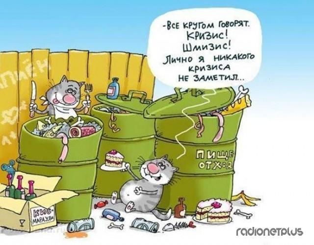 Как насладиться экономическим кризисом :)