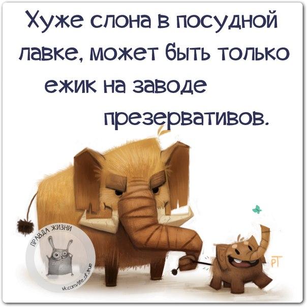 http://www.radionetplus.ru/uploads/posts/2015-03/1426189697_frazki-12.jpg