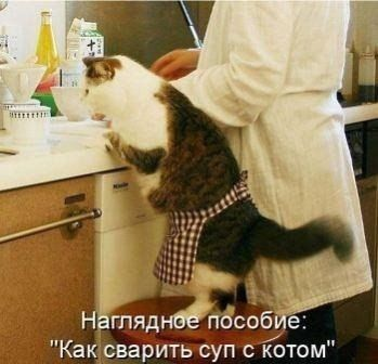 http://www.radionetplus.ru/uploads/posts/2015-08/1439742240_18-www.radionetplus.ru.jpg