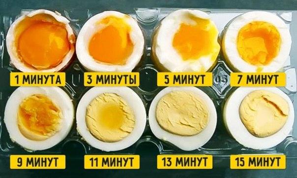 Время варки яиц