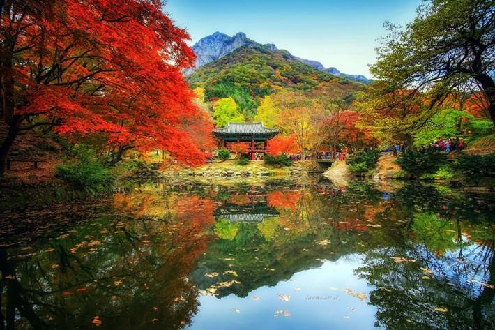 Зеркало природы в реках и озерах (12 фото)