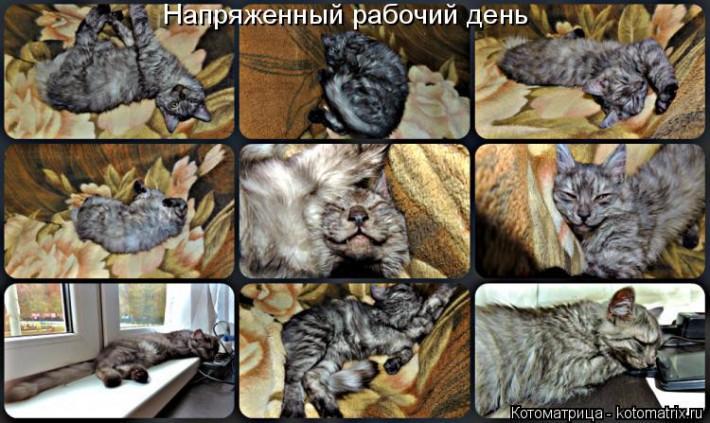 Улыбнись-ка! :)