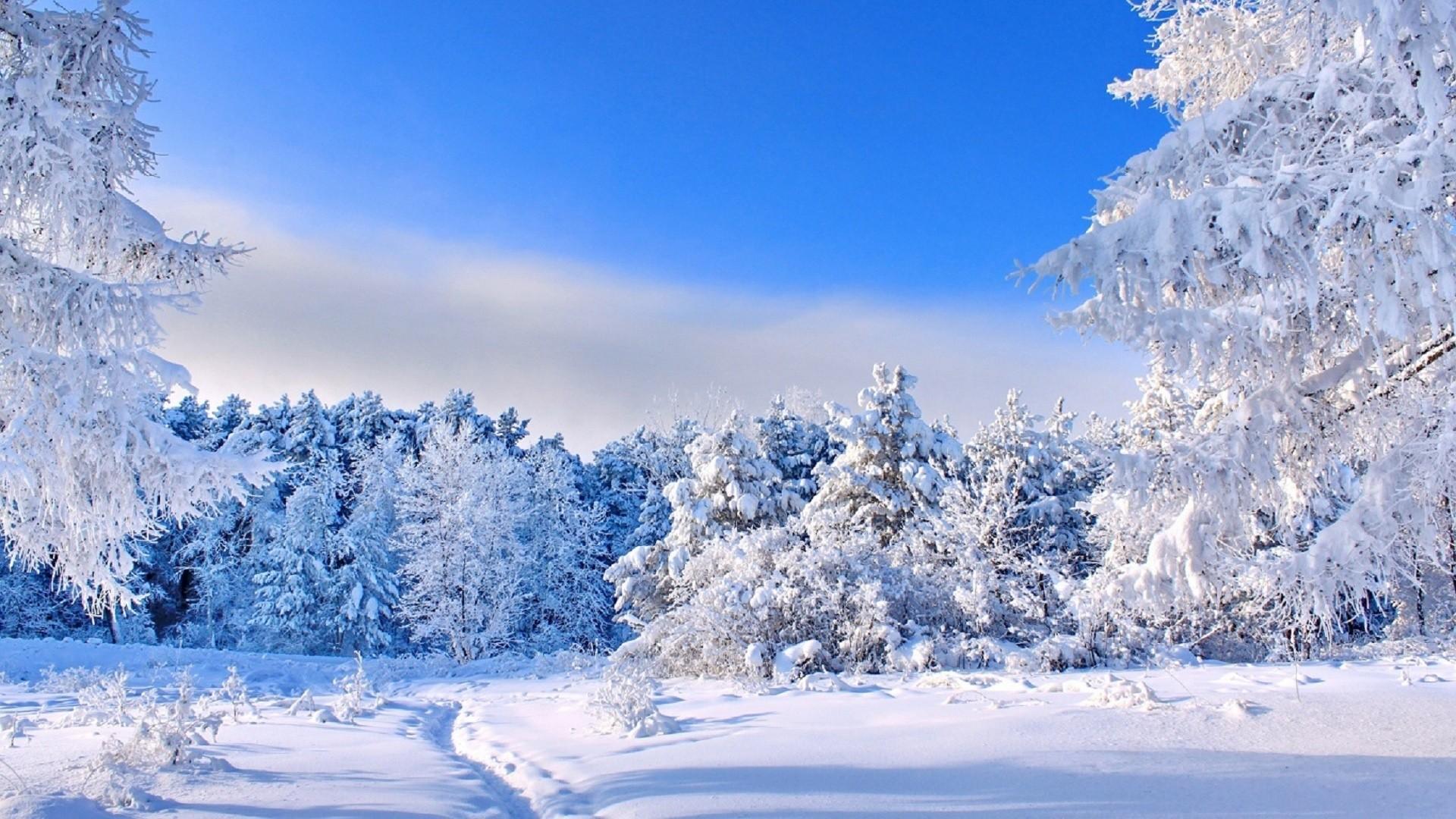 Картинки На Рабочий Стол Зима Детские