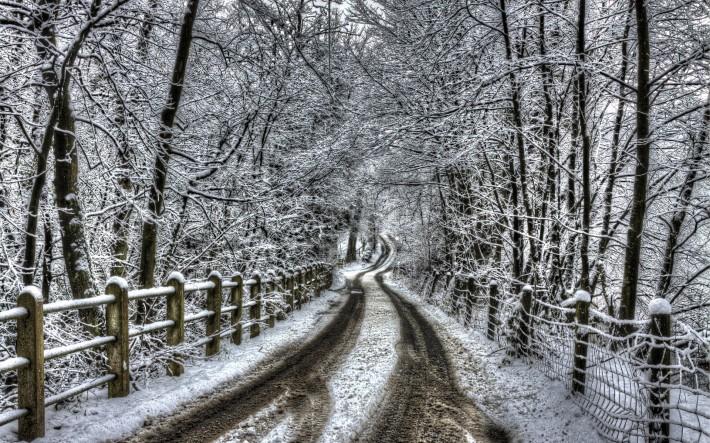 Зимние обои на рабочий стол дорога в зимнем лесу