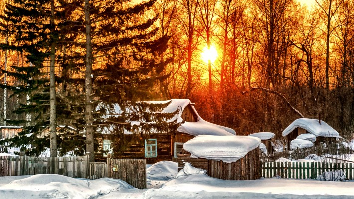 Зимние обои на рабочий стол солнечный зимний день в лесу