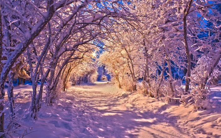 Зимние обои на рабочий стол снежная дорожка в свете фонарей