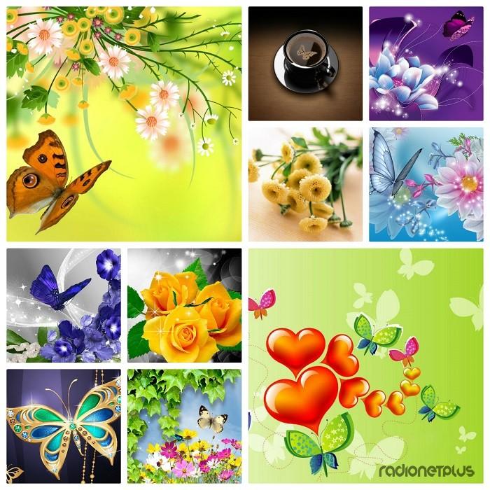 Картинки На Рабочий Стол Бабочки